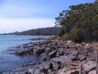Rocky shore of Cockless Creek. Looking south towards Antarctica.