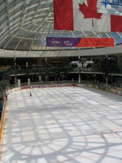 The ice rink in the West Edmonton Mall.