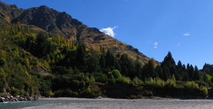 Panorama of the hillside beside the Shotover river