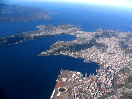 Wellington City from the Air