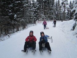 Ryan Hellyer and Ivelina sledding