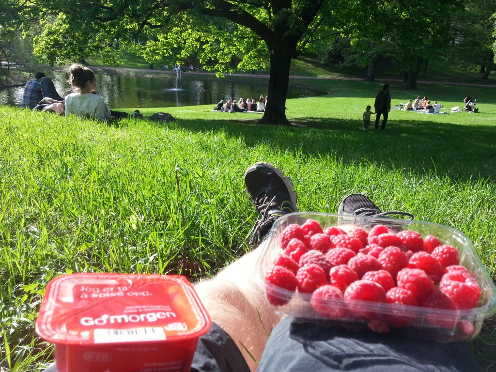 Raspberries in Slottsparken