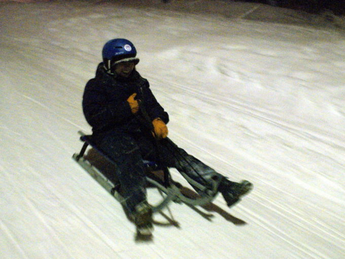 Aloisia sledding in Norway