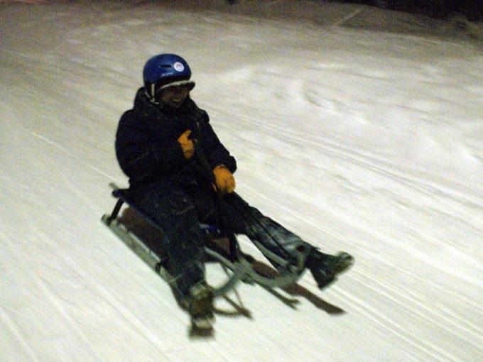 Aloisia sledding in Norway