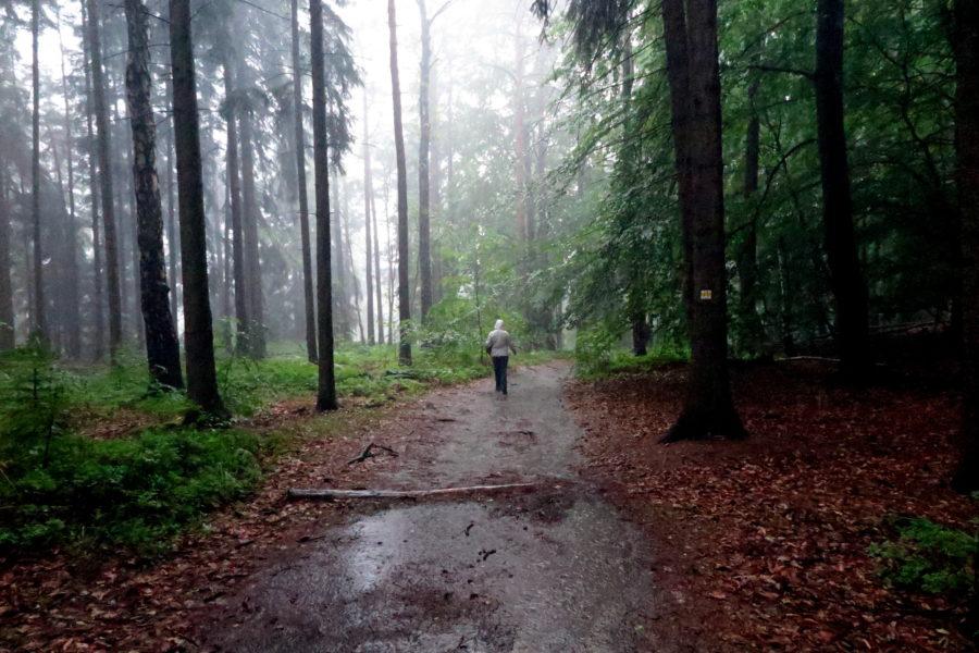 Rain in Sachsen