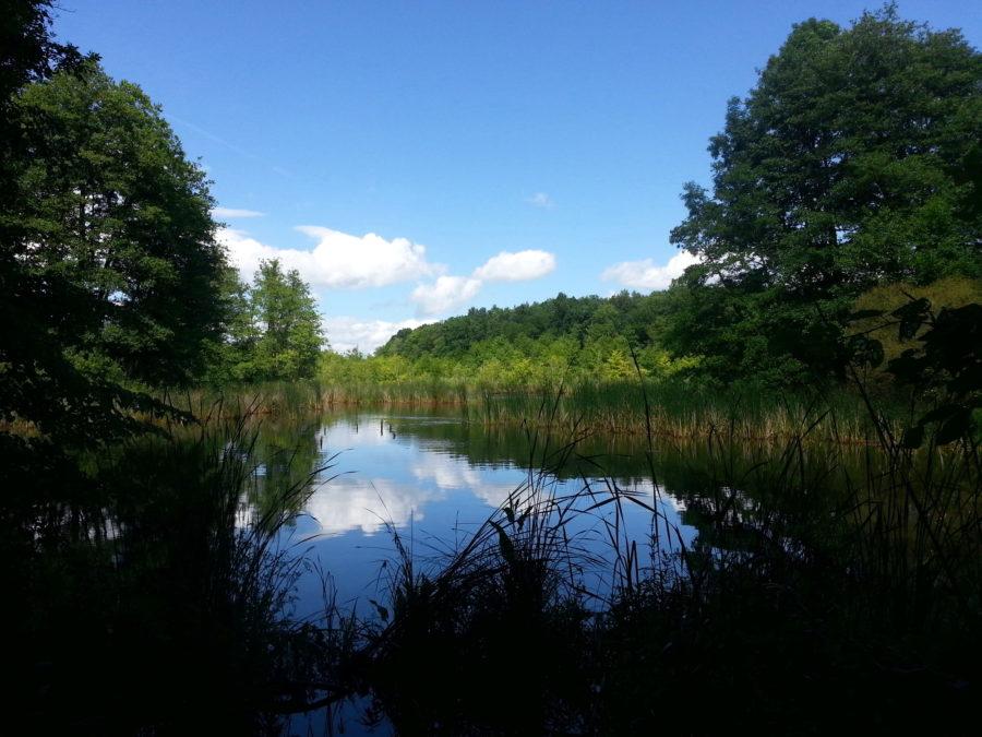 Lake in Strausberger