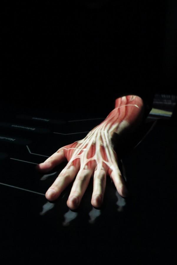 Michelles hand